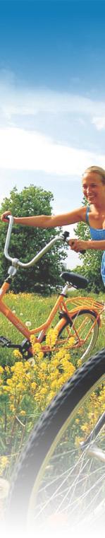 bikesgauche